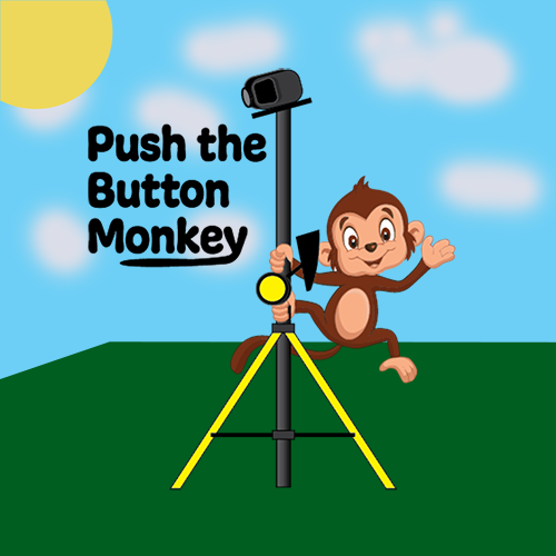Push the Button Monkey